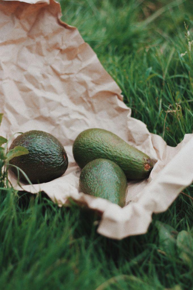 Unripe Avocadoes