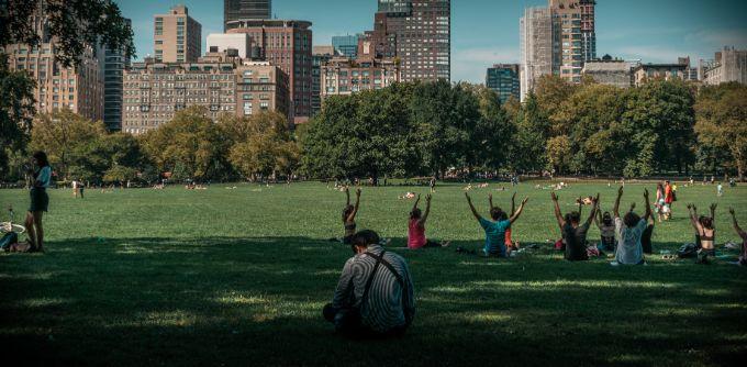 Take a stroll through Central Park