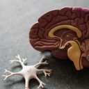 image for topic 'Exercise your brain'