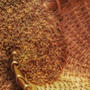image for topic 'Store milled grain'